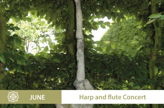 concert-flute-harpe-EN