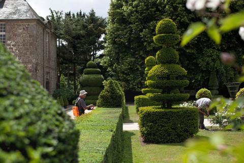 Histoire les jardins de la ballue visite de jardins class s en bretagne - Jardins de bretagne a visiter ...