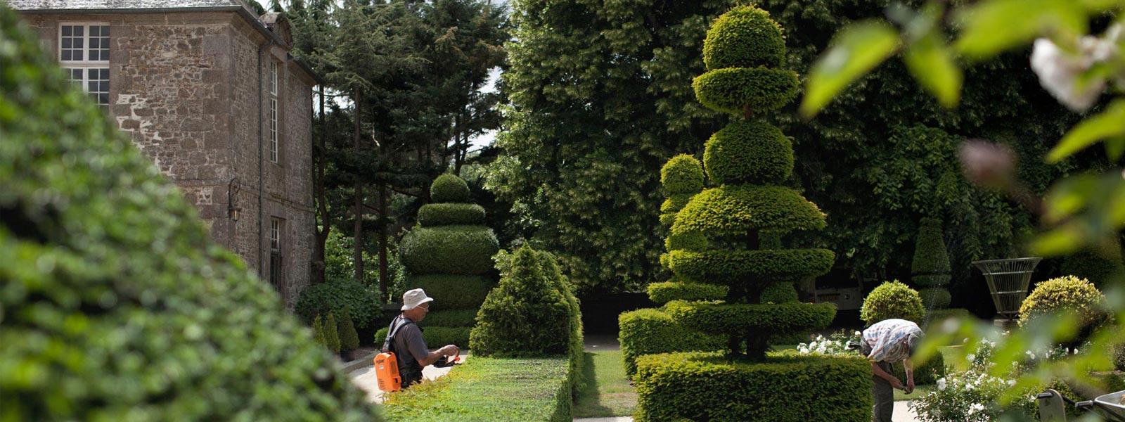 chateau-et-jardins-de-la-ballue-art-topiaire