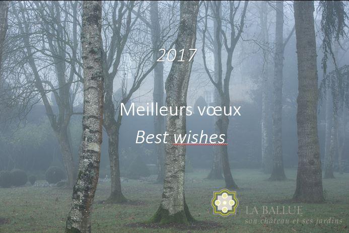 laballue-voeux-2017