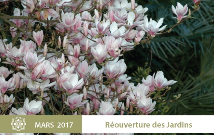 actu-2017-reouverture