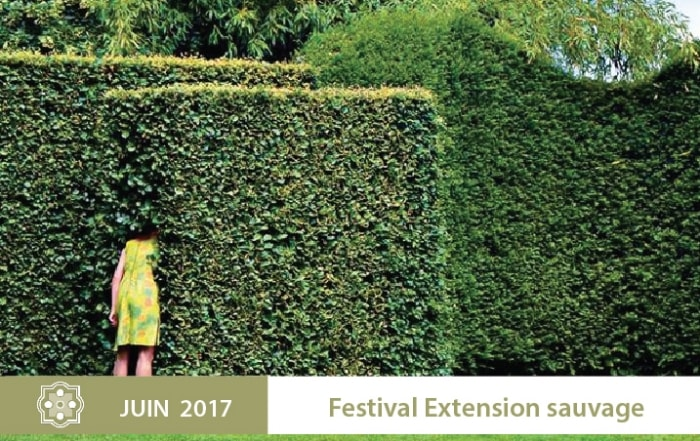 Festival-Extension-sauvage-700x441-min