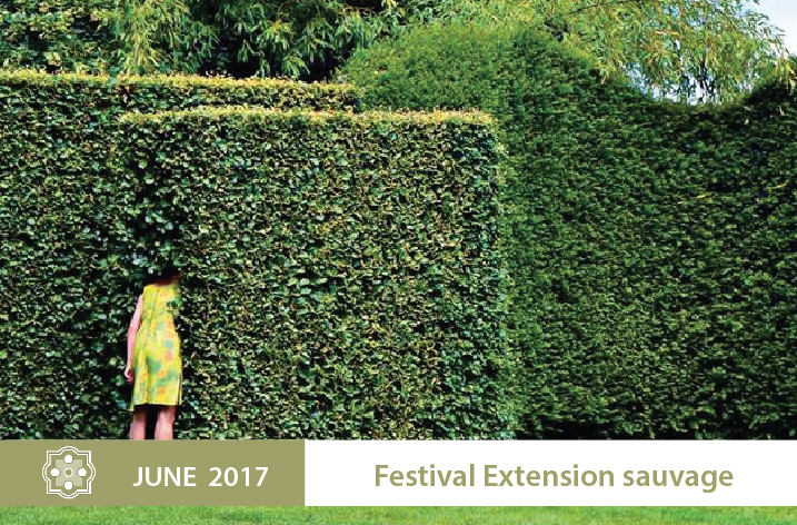Festival-Extension-sauvage.-enjpg