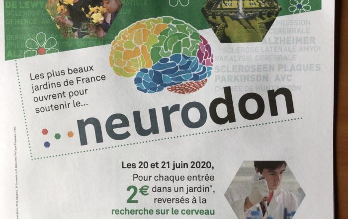 Neurodon 2020